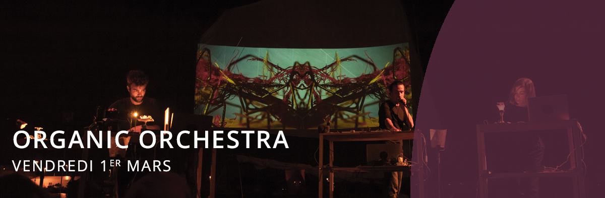 Concert Organic Orchestra